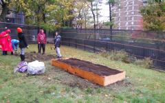 Community garden started